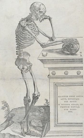 "Skeleton from Andreas Vesalius' De humani corporis fabrica, published in 1543. The words on the tomb are from Silius Italicus' epic poem Punica, and reads: ""Death robbed him of all his beauty: a Stygian hue spread over his snow-white skin and destroyed his comeliness."" (Translated by J.D. Duff.) Image courtesy of the Wellcome Library, London."