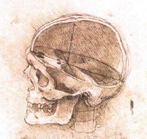 Skull detail by Leonardo da Vinci